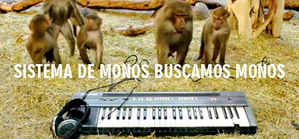 Sistema de Monos buscamos monos